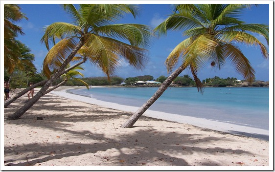 Martinique_Beach_(Salines)