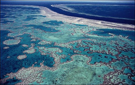 gran_barrera_de_arrecifes