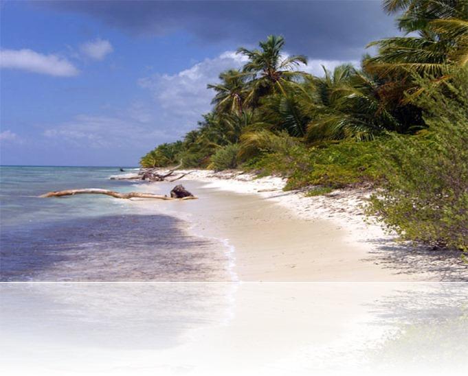 bahamas002
