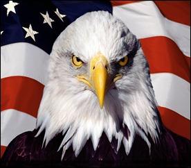 USAeagle-on-flag-w