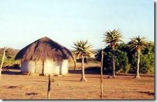 BotswanaMOLEPOLOLE