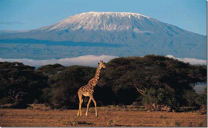 TAN mt-kilimanjaro1