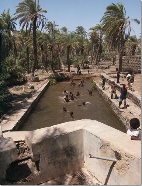 YI piscine_palmeraie_dikhil_